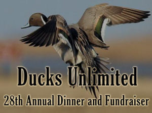 Calgary fundraiser dinner - ducks unlimited