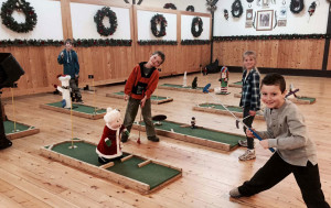 South of Calgary Catering Facility Event Activity Ideas - Mini Golf