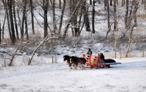 South of Calgary Catering Facility Christmas Event Activity Ideas - Sleigh Rides
