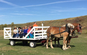 South of Calgary Catering Facility Event Activity Ideas - Horse Drawn Wagon Ride